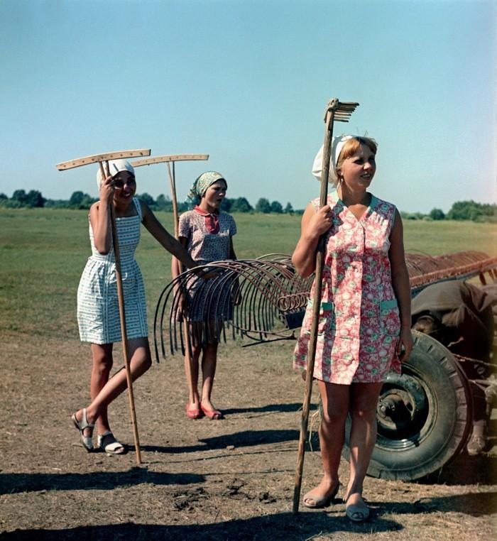 смотреть онлайн видео фото с рязанскими девушками бесплатно без регистрации