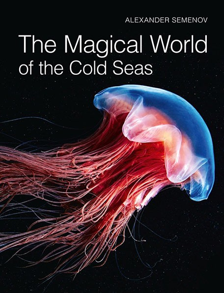 The Magical World of the Cold Seas Книга:  