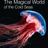 The Magical World of the Cold Seas -